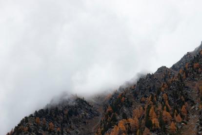 Paysage montagneux dans la brume d'automne