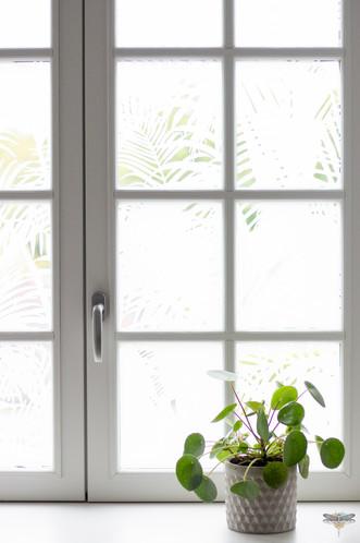 Aménagement et décoration d'un espace de bureaux professionnels à Senlis, pour DecoWorkers, par Carnets Libellule. Coralie Vasseur est votre architecte d'intérieur UFDI à Compiegne : zoom sur la vitrophanie de la fenêtre, avec son motif jungle qui permet la confidentialité