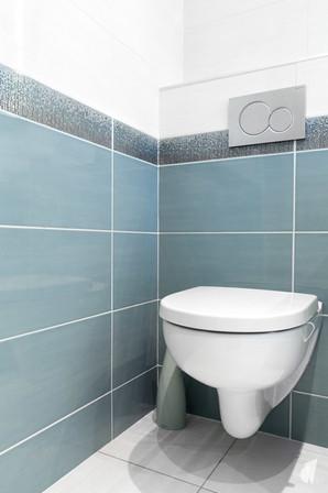 Création d'une salle de bains dans un appartement à Annecy, par le Studio Coralie Vasseur. Coralie Vasseur est votre architecte d'intérieur et décoratrice UFDI à Annecy, Genève et en Haute Savoie : WC suspendu et faïence bleu glacier avec listel