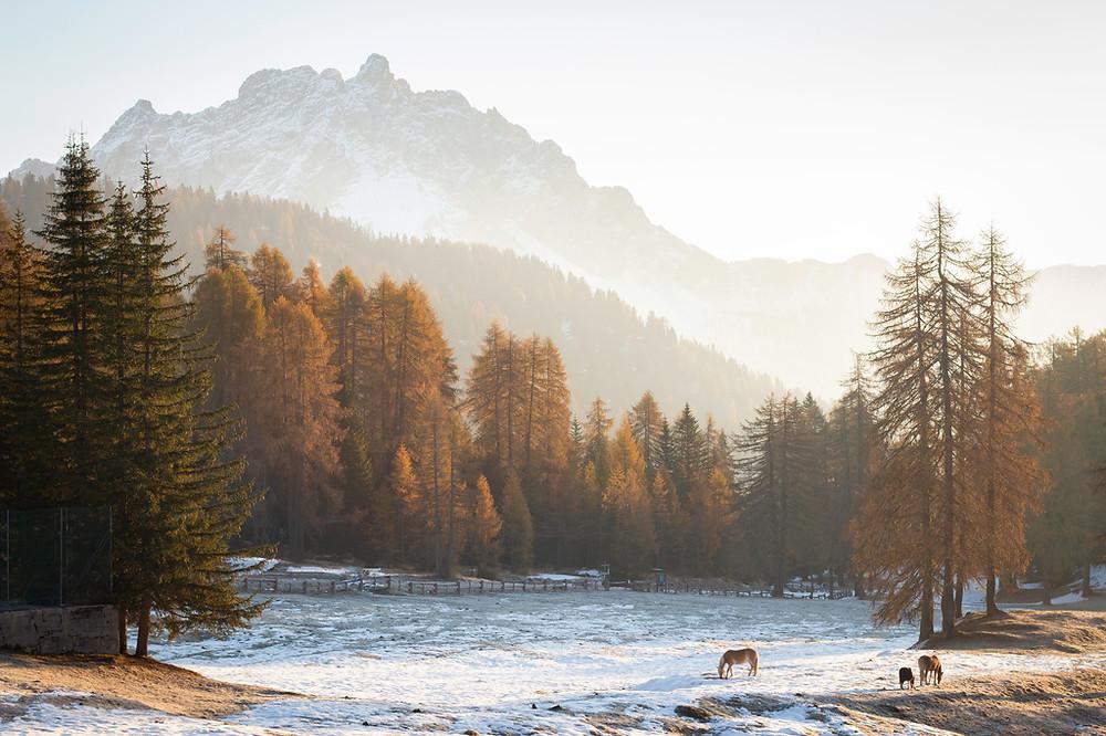 montagne dans la brume, les Dolomites à l'automne