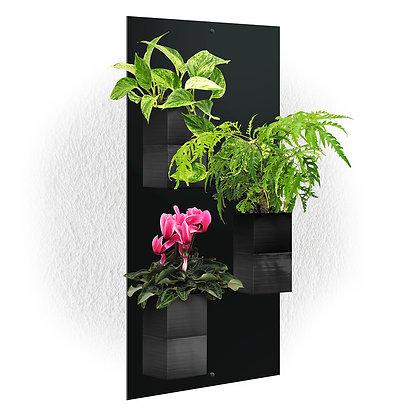 Plaque murale TRIO + 3 Capill'O Cubes Noirs