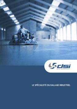 Brochure DSI par Pesto Studio