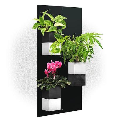 Plaque murale TRIO + 3 Capill'O Cubes Noirs/Blancs