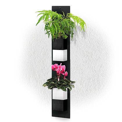 Plaque murale DUO + 2 Capill'O Cubes Noirs/Blancs
