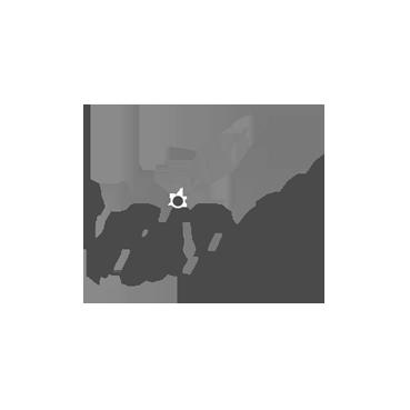 bridgy.png