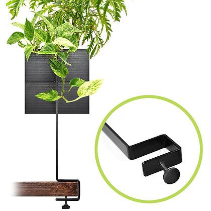 Support de bureau + 2 Capill'O Cubes Noirs