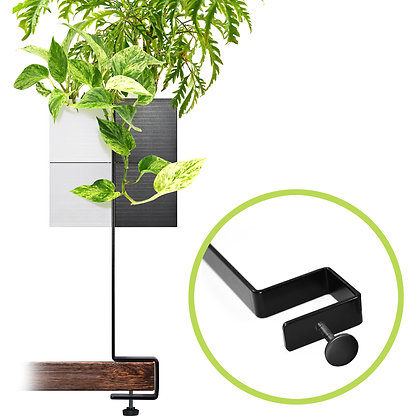 Support for desk + 2 Capill'O Cubes pack