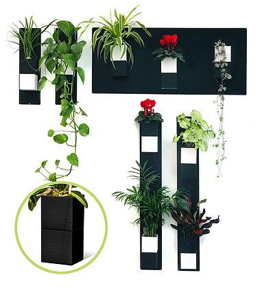 Mur végétal S pots noirs