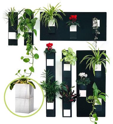 Plant wall M white pots