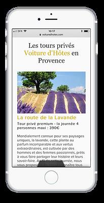 Site internet Voiture d'Hôtes par Pesto Studio