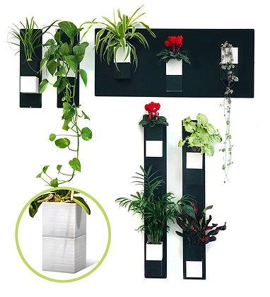 Mur végétal S pots blancs
