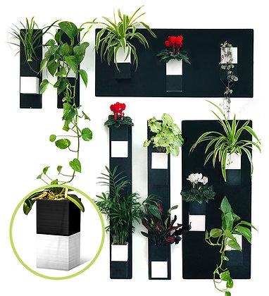 Mur végétal M pots noirs/blancs