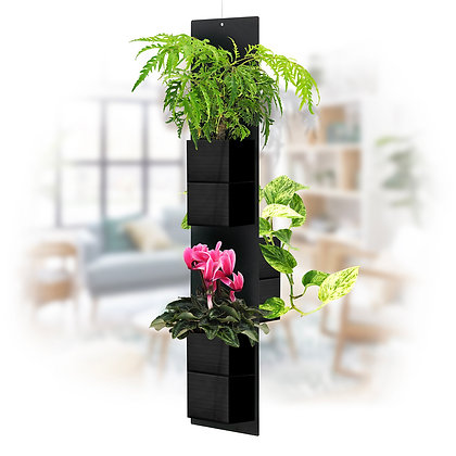 Mobile plant M black pots