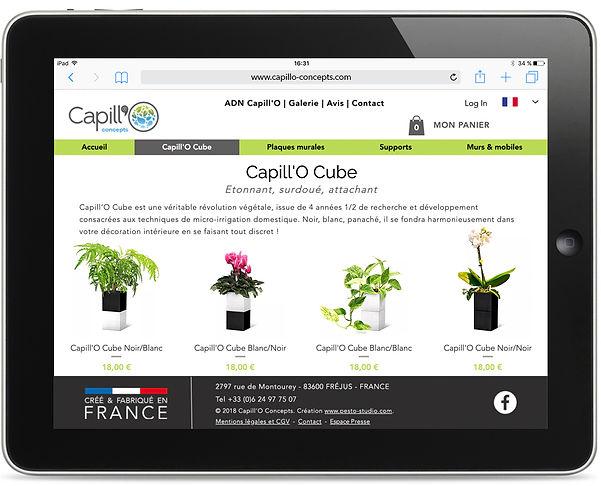 Site internet Capillo Concepts par Pesto Studiopillo-2.jpg