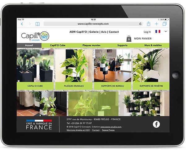 Site internet Capillo Concepts par Pesto Studio