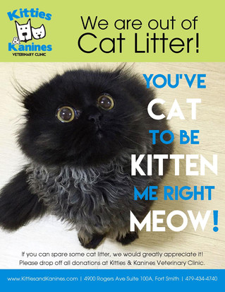 Cat Litter Needed!