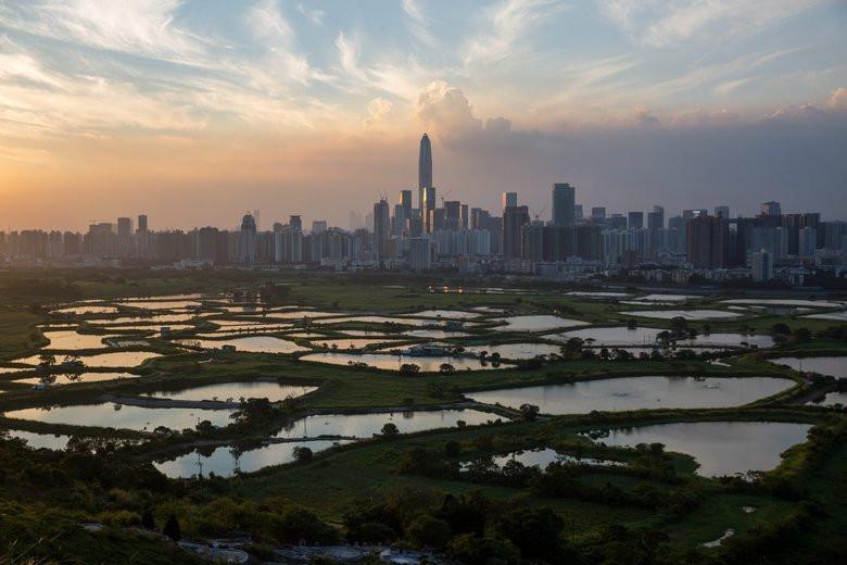 Shenzhen Polyculture Armature