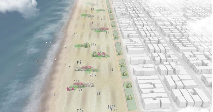 Manhattan Beach Dune Restoration