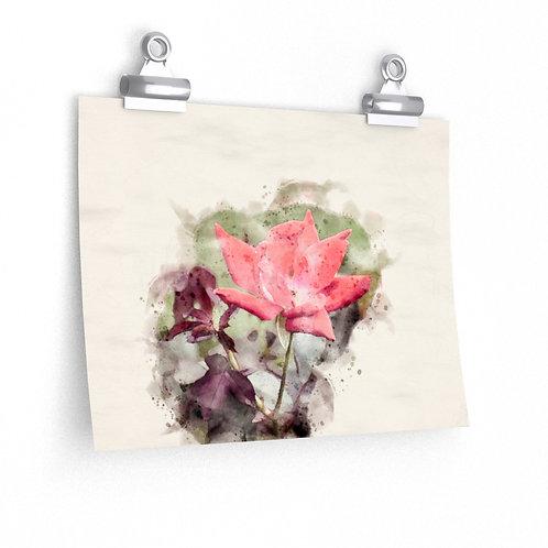 Red Rose Watercolor Print