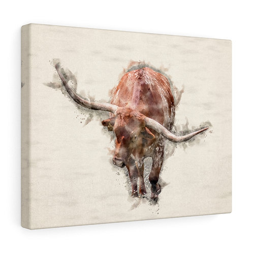 Red Longhorn Watercolor Canvas