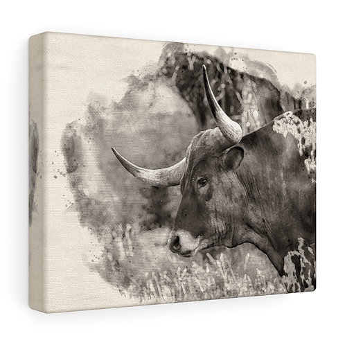 Longhorn Black and White Watercolor Canvas