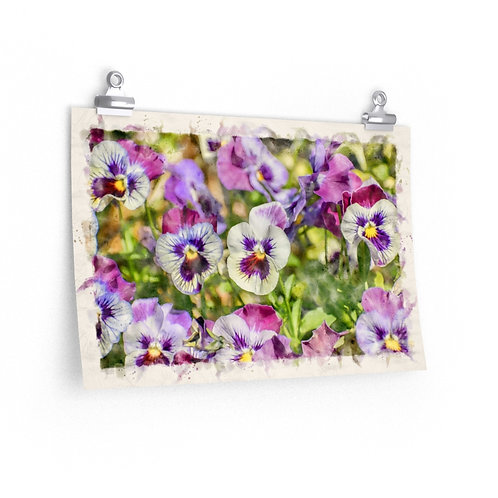"""Pansy Flower Watercolor Print 18"""" x 12"""""""