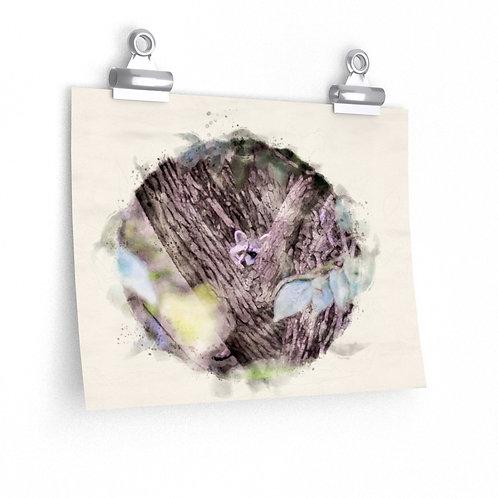 Dangling Feet Raccoon Watercolor Print