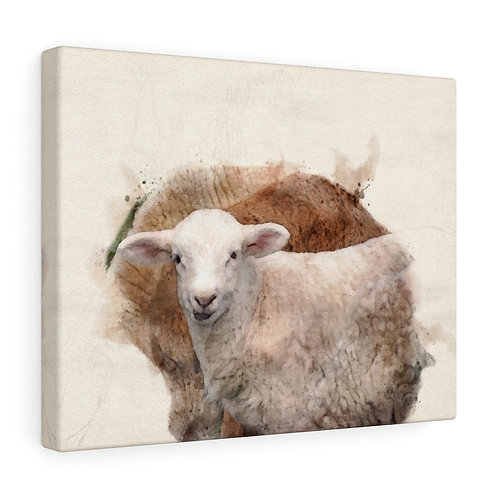Lamb Watercolor Canvas