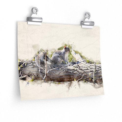 Squirrel Watercolor Print