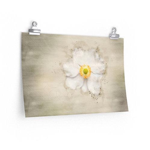 White Flower Watercolor Print