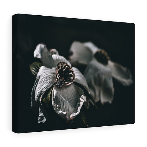 Shaded Flower with Ring Canvas