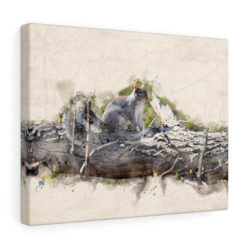 Squirrel Watercolor Canvas