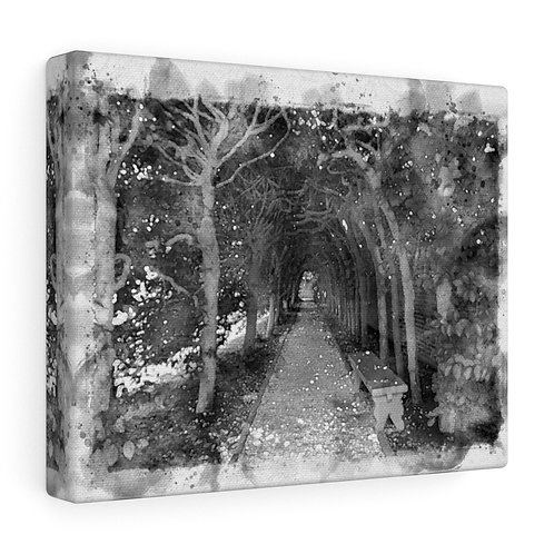 Garden Grove Black and White Watercolor Canvas