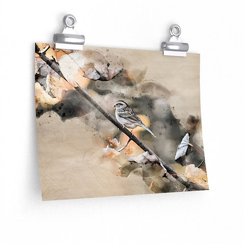 House Sparrow Watercolor Print