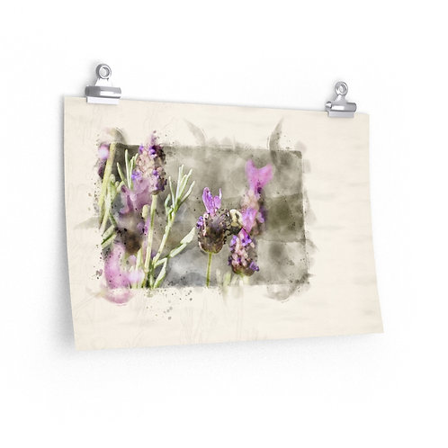 Bee and Lavender Watercolor Print
