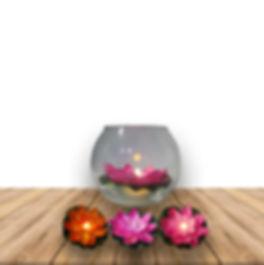 Flores-de-loto-con-luz-3002200.jpg