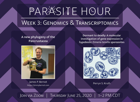 Parasite Hour Week 3