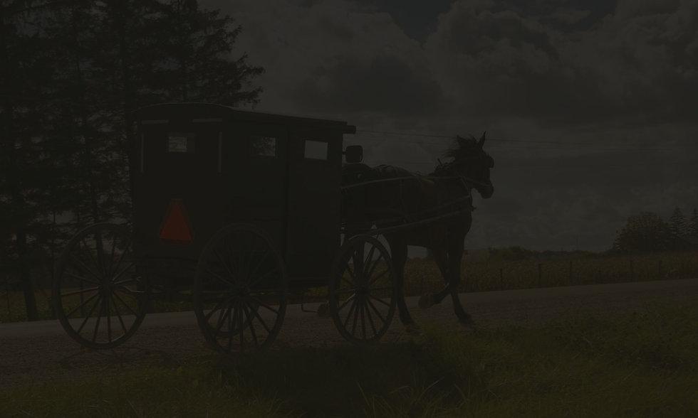 horse-and-buggy-mennonite-elmira-ontario