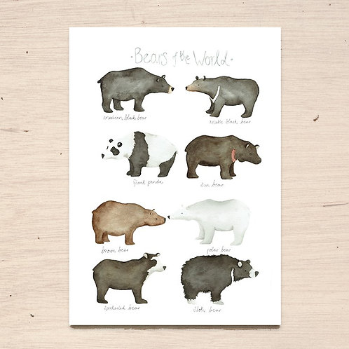 Bears of The World Print