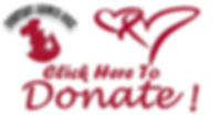 JSH cares-donate button 2.jpg