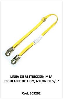 Linea de restriccion MSA 505202