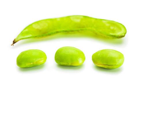 soy lecithin, greenwash