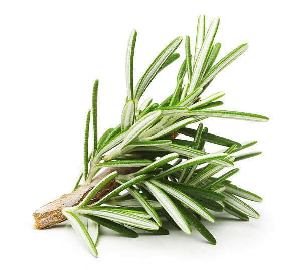rosemary antioxidant, greenwash