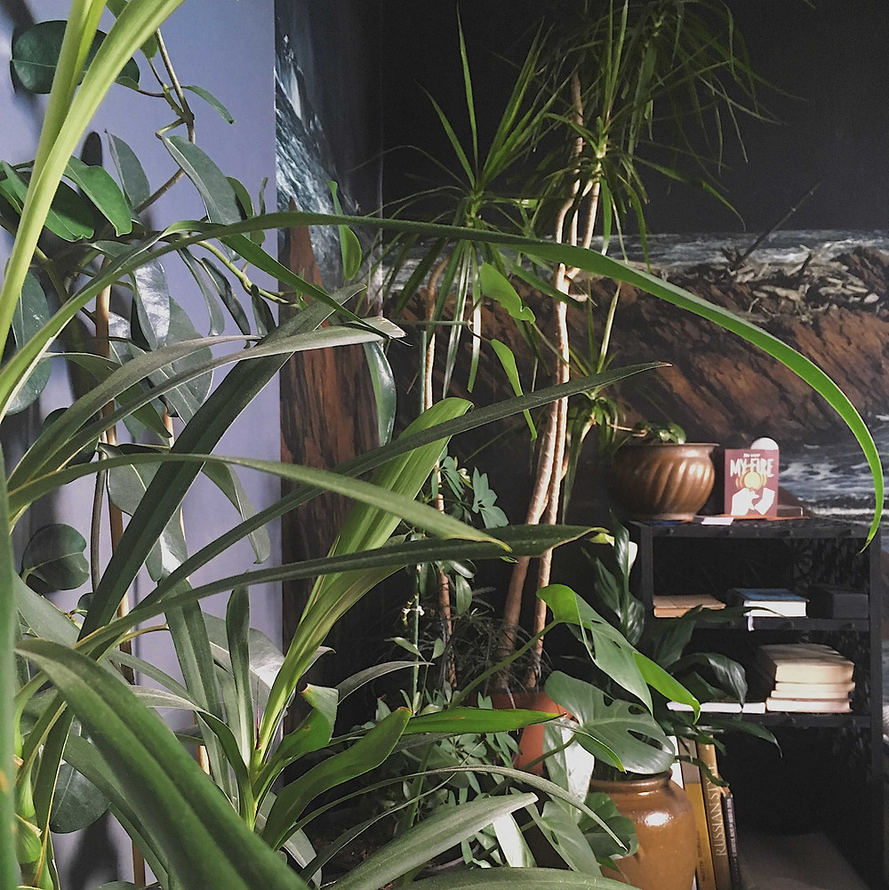 Greenwashery HQ bedroom