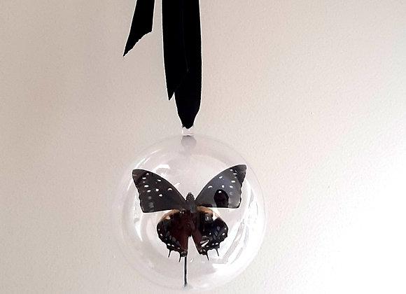 Boule décorative taille 2  papillon bleu foncé