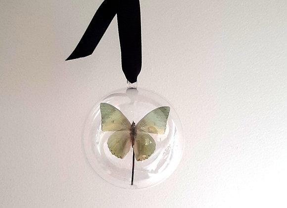 Boule décorative taille 1 papillon vert