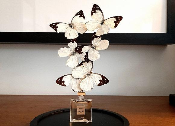Miniature CHANEL papillons noirs et blancs