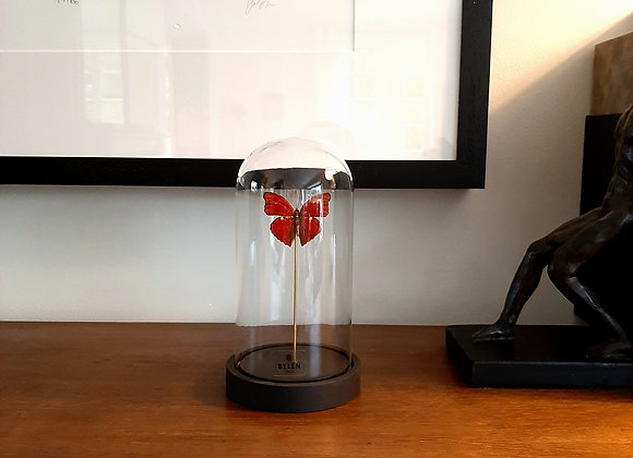 Mini cloche allongée 1 papillon rouge