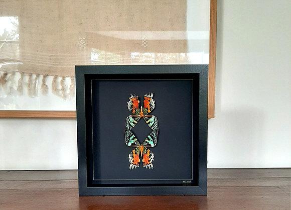 Cadre MADAGASCAR fond noir