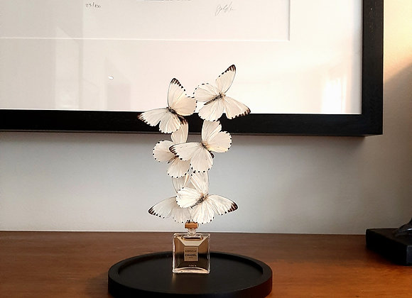 Miniature CHANEL papillons blancs